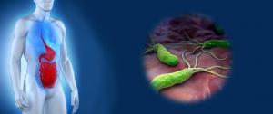 бактериальный гастрит